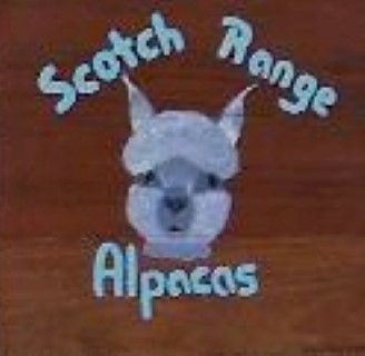 Scotch Range Alpacas