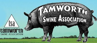 Tamworth Swine Association