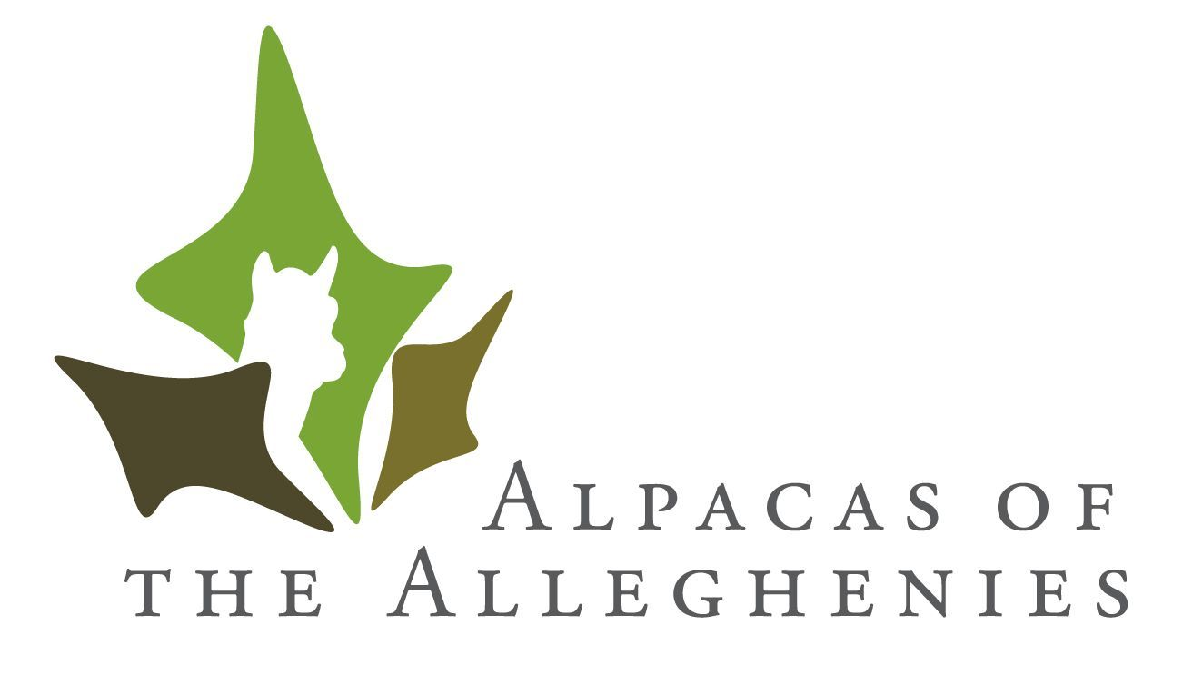PA Alpaca for Sale at Alpacas of the Alleghenies, LLC ranches.