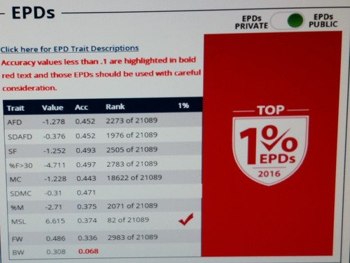 Top EPD's!