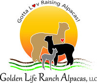 Golden Life Ranch Alpacas, LLC