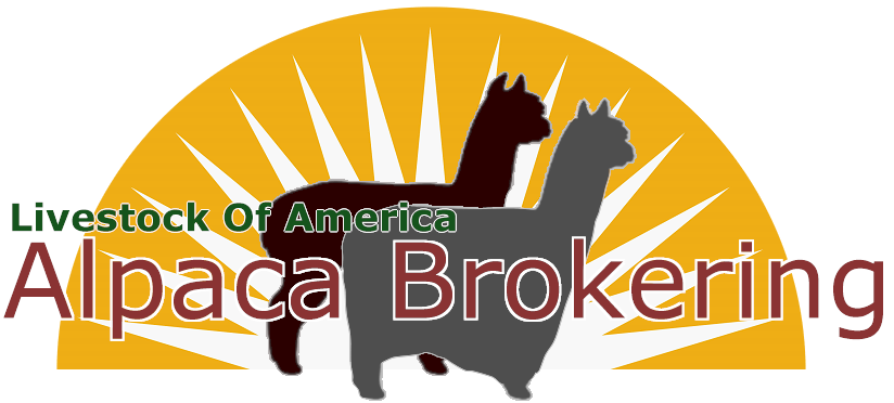 OR Livestock for Sale at Alpaca Brokering ranches.