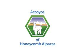 Honeycomb Alpacas