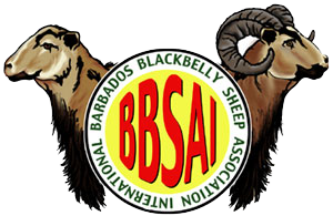 International Barbados Blackbelly Sheep Association