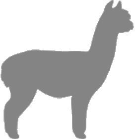 About Huacaya Alpacas