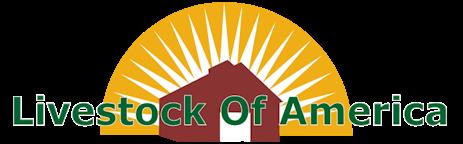 Livestock Of America