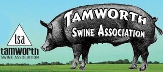 Tamworth Swine Association