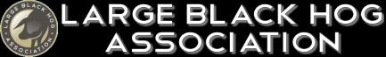 Large Black Hog Association