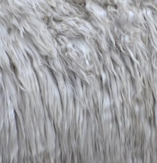 More beautiful fiber