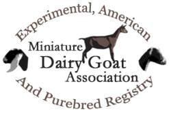 Miniature Dairy Goat Association